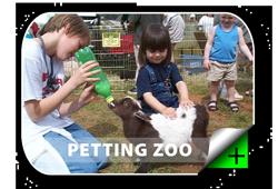 Petting Zoo & Pony Rides